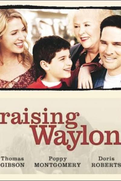 Caratula, cartel, poster o portada de Educando a Waylon