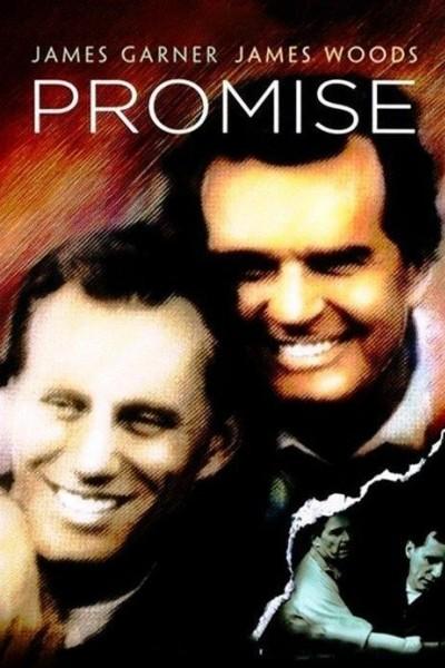 Caratula, cartel, poster o portada de La promesa