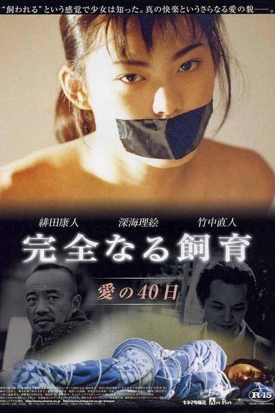 Caratula, cartel, poster o portada de Perfect Education 2: 40 Days of Love