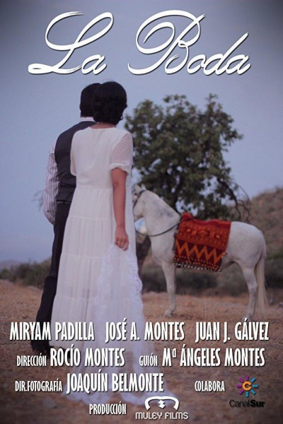 Caratula, cartel, poster o portada de La boda