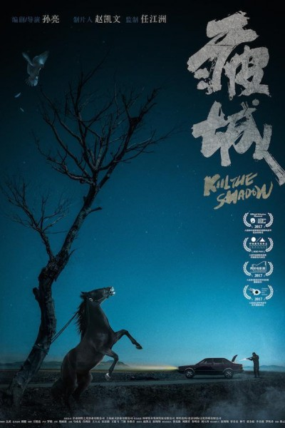Caratula, cartel, poster o portada de Kill the Shadow
