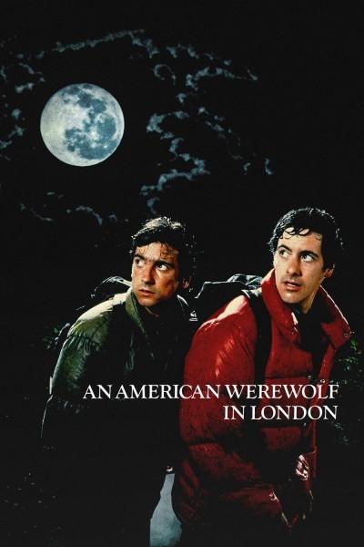 Caratula, cartel, poster o portada de Un hombre lobo americano en Londres