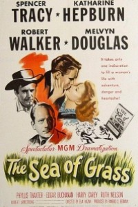Caratula, cartel, poster o portada de Mar de hierba