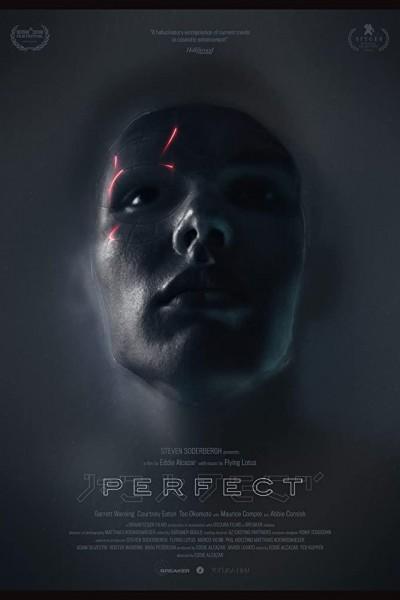 Caratula, cartel, poster o portada de Perfect