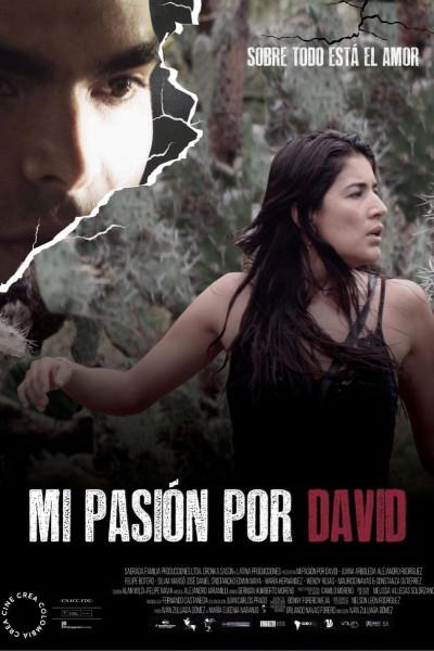 Caratula, cartel, poster o portada de Mi pasión por David