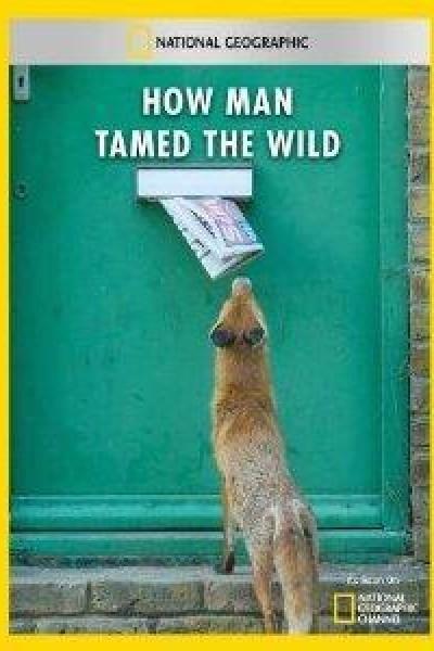 Caratula, cartel, poster o portada de La domesticación de los animales