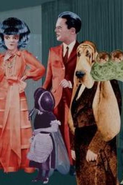 Caratula, cartel, poster o portada de Animales domésticos: El sapo