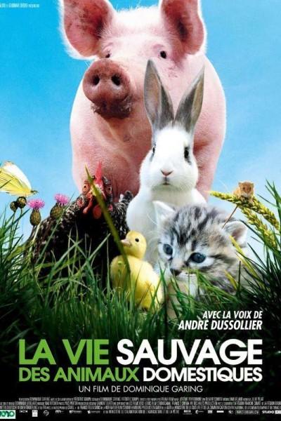 Caratula, cartel, poster o portada de La vida salvaje de los animales domésticos
