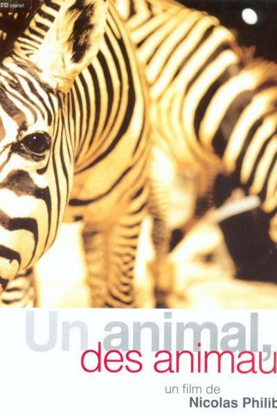Caratula, cartel, poster o portada de Un animal, animales (Un animal, varios animales)