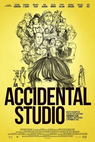 Caratula, cartel, poster o portada de An Accidental Studio