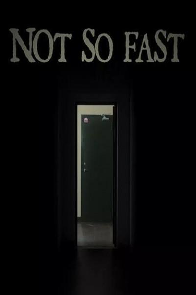 Caratula, cartel, poster o portada de Not So Fast