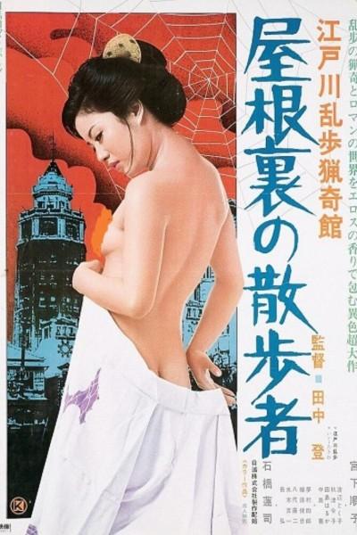Caratula, cartel, poster o portada de Watcher in the Attic (The stroller in the Attic)