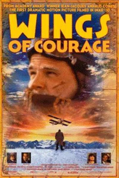Caratula, cartel, poster o portada de Las alas del coraje