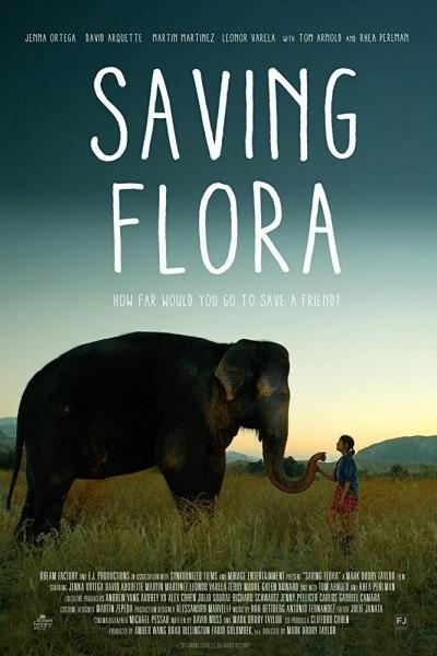 Caratula, cartel, poster o portada de Saving Flora