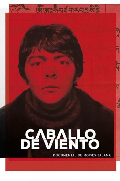 Caratula, cartel, poster o portada de Caballo de viento