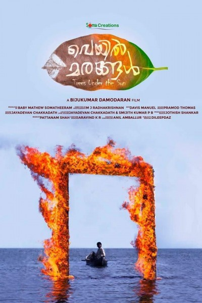 Caratula, cartel, poster o portada de Trees Under the Sun