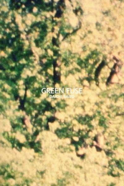 Caratula, cartel, poster o portada de Green Fuse