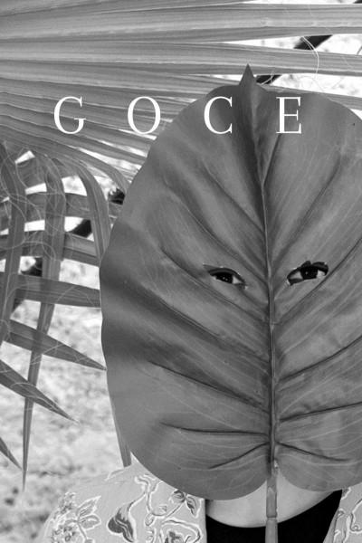 Caratula, cartel, poster o portada de Goce