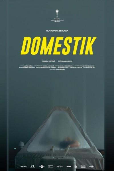 Caratula, cartel, poster o portada de Domestik