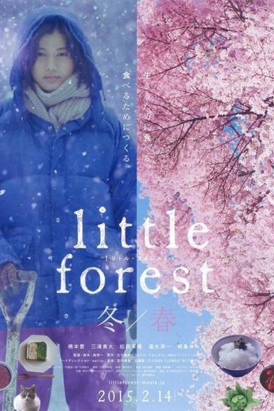 Caratula, cartel, poster o portada de Little Forest: Winter/Spring