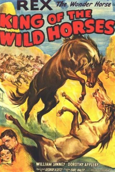 Caratula, cartel, poster o portada de El rey de los caballos salvajes
