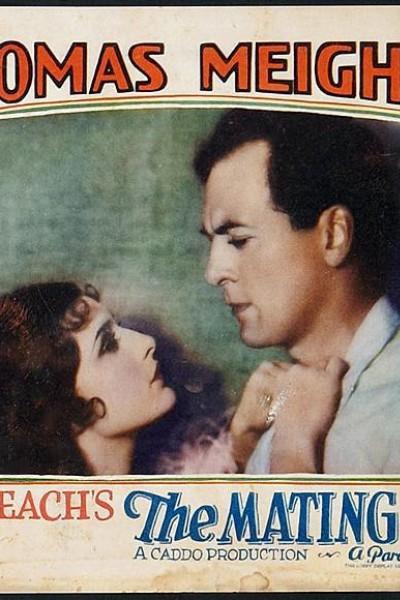 Caratula, cartel, poster o portada de Amor siniestro