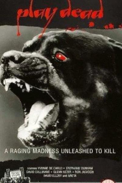 Caratula, cartel, poster o portada de Hechizos diabólicos