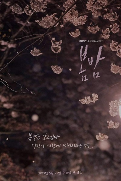 Caratula, cartel, poster o portada de One Spring Night