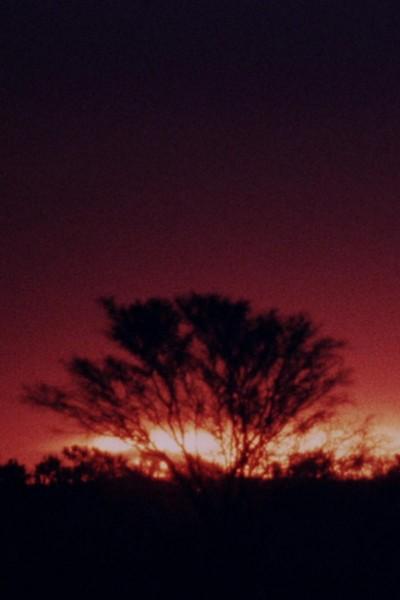 Caratula, cartel, poster o portada de The Second Journey (To Uluru)