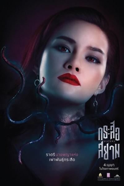Caratula, cartel, poster o portada de Sisters