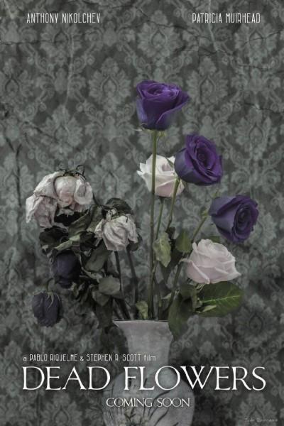 Caratula, cartel, poster o portada de Dead Flowers