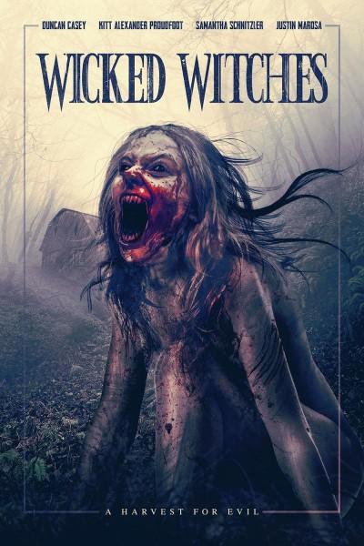 Caratula, cartel, poster o portada de Wicked Witches