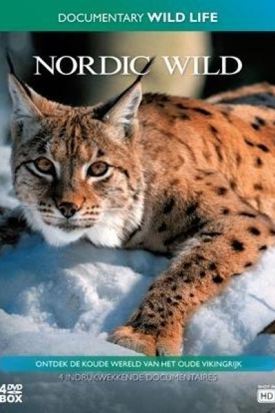 Caratula, cartel, poster o portada de Escandinavia salvaje