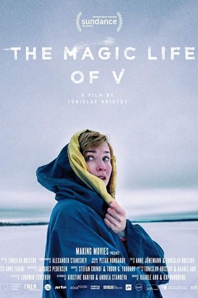 Caratula, cartel, poster o portada de The Magic Life of V