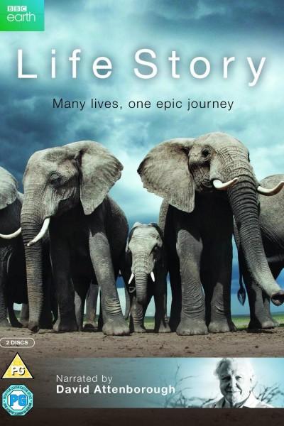 Caratula, cartel, poster o portada de Historia de la vida