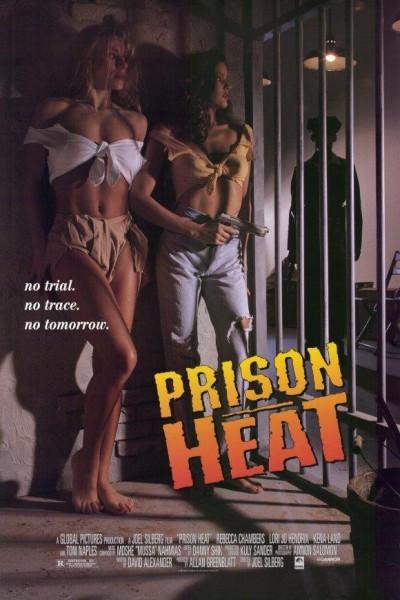 Caratula, cartel, poster o portada de Prison Heat (Caliente al Rojo Vivo 2)