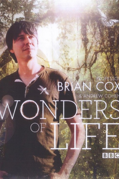 Caratula, cartel, poster o portada de Maravillas de la vida