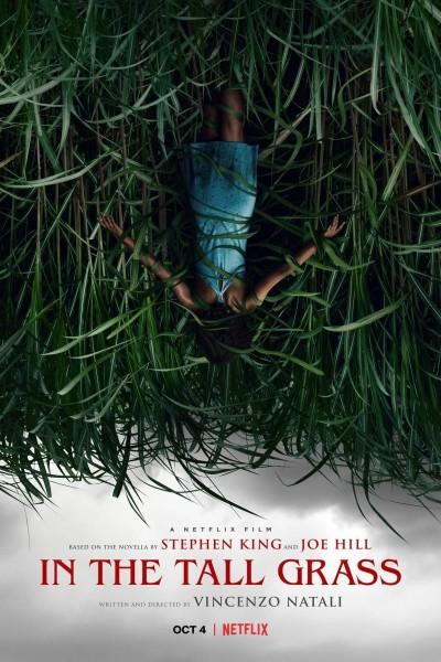 Caratula, cartel, poster o portada de En la hierba alta
