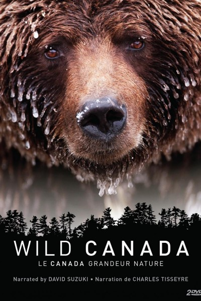 Caratula, cartel, poster o portada de Canadá salvaje