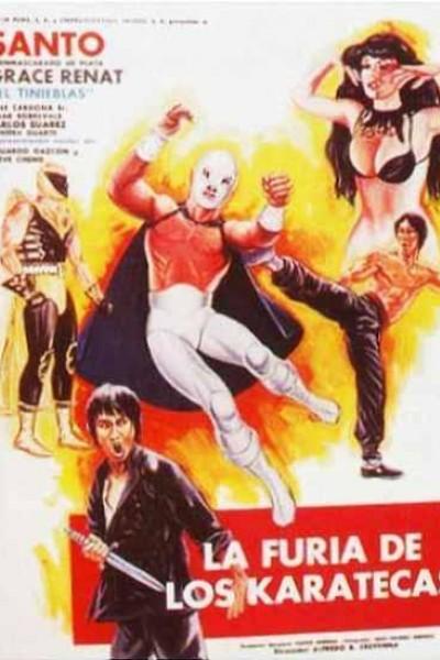 Caratula, cartel, poster o portada de La furia de los karatecas