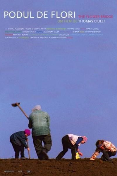 Caratula, cartel, poster o portada de The Flower Bridge