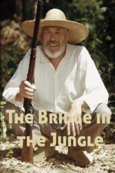 Caratula, cartel, poster o portada de Un puente en la jungla