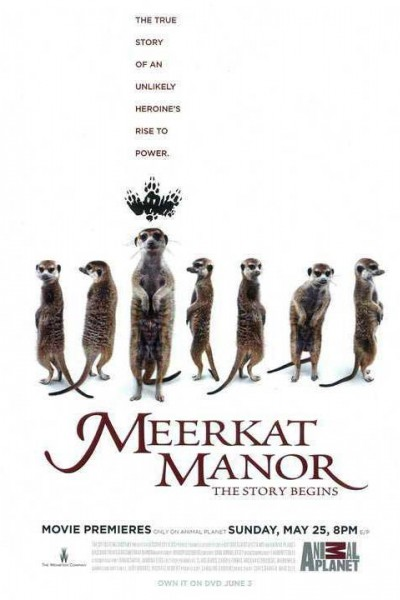 Caratula, cartel, poster o portada de Meerkat Manor: The Story Begins