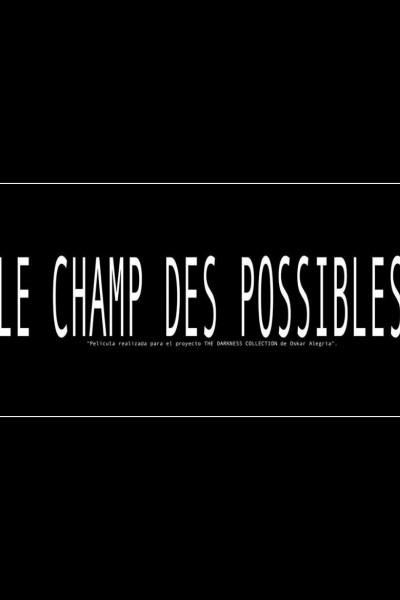 Caratula, cartel, poster o portada de The Field of Possible