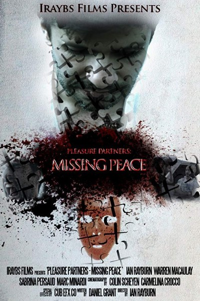 Caratula, cartel, poster o portada de Pleasure Partners: Missing Peace
