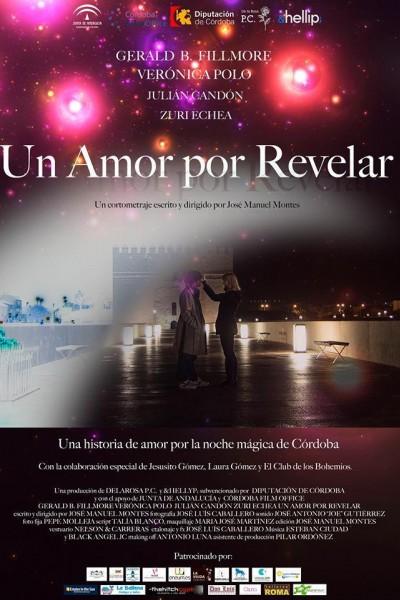 Caratula, cartel, poster o portada de Un amor por revelar