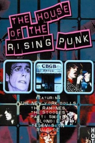 Caratula, cartel, poster o portada de The House of the Rising Punk
