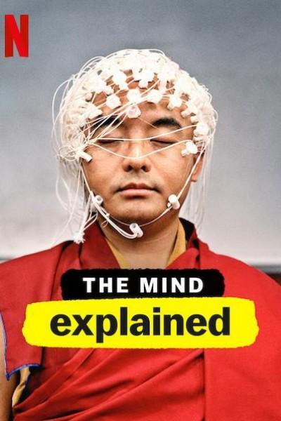 Caratula, cartel, poster o portada de La mente, en pocas palabras