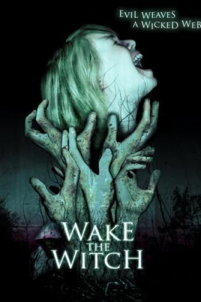 Caratula, cartel, poster o portada de Wake the Witch