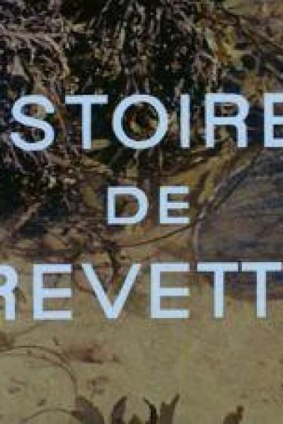 Caratula, cartel, poster o portada de Histoires de crevettes